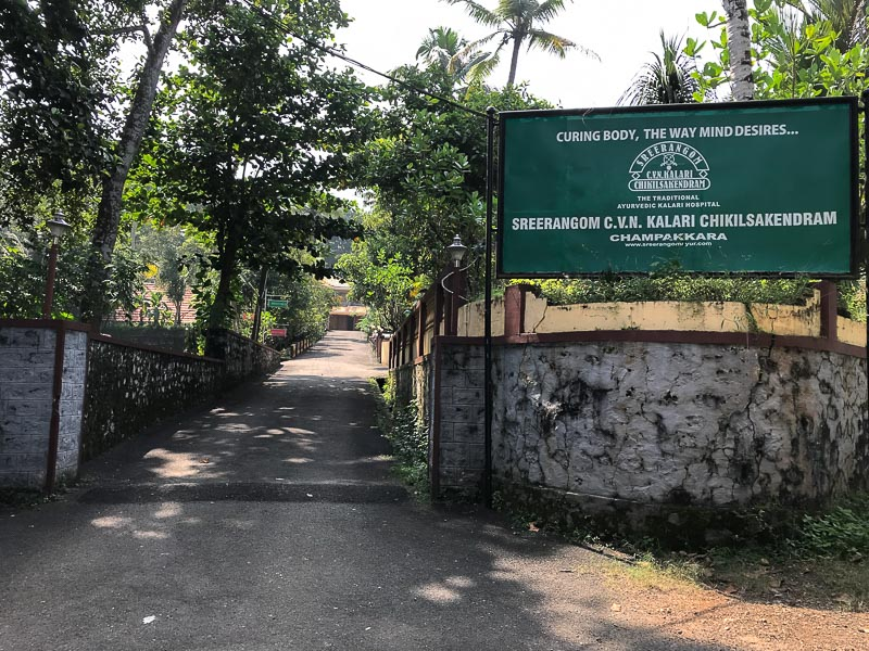 green surroundings in Traditional Kalari Centre
