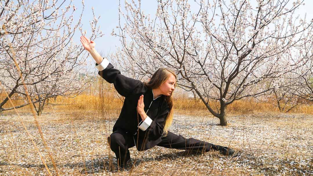 Qufu Shaolin Kung Fu School Again!!!