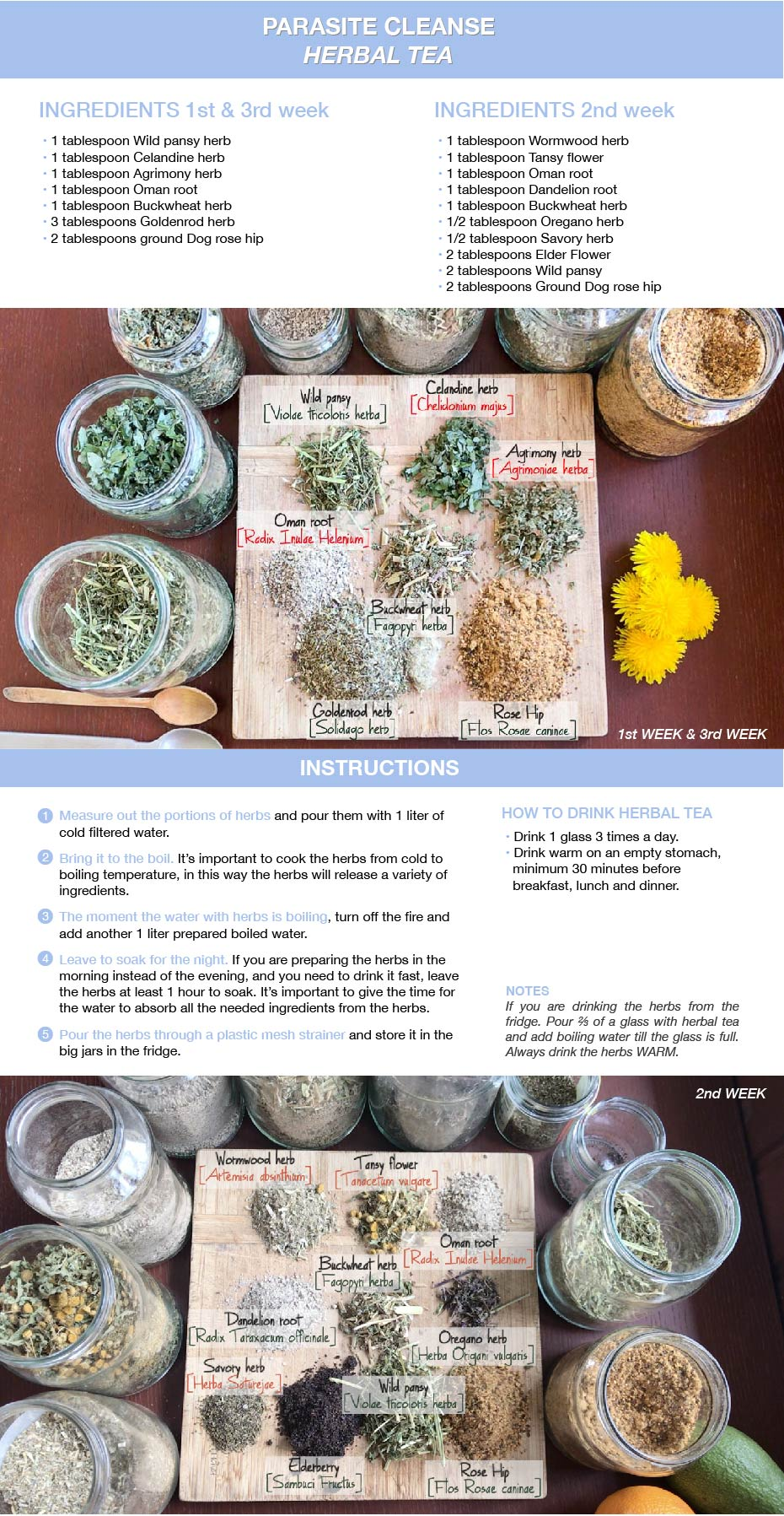 Parasite Cleanse Herbal Tea