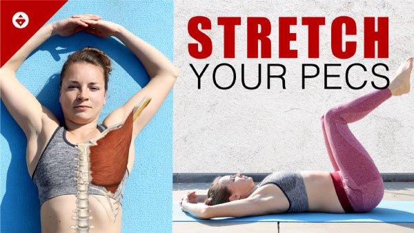 Shoulder mobility workout