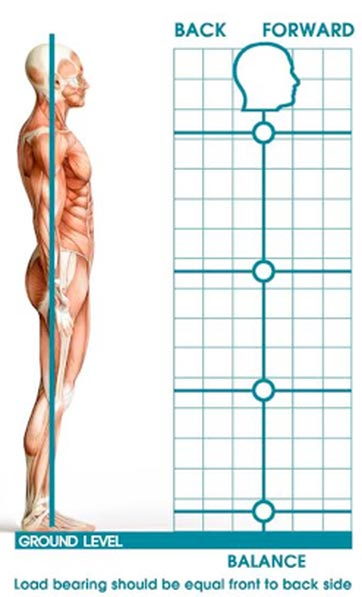 assess your posture